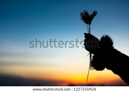 Grass grab with a relaxing holiday with a relaxing sunset. #1227250426
