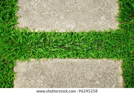 Grass green background texture pattern nature design