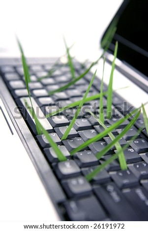Grass growing from computer keyboard, ecology metaphor - stock photo