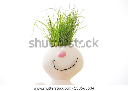 grass head isolated on white