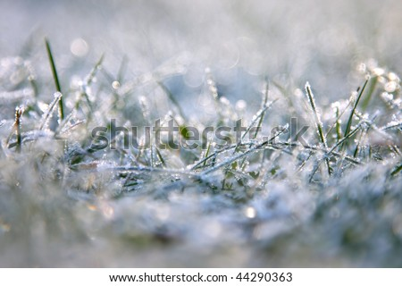 Grass is frozen, extreme depth of field is used and lots of attractive lens flare is present.
