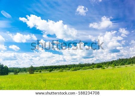 Grass Lawn Plain Nature