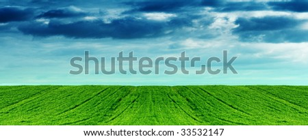Grass on hill