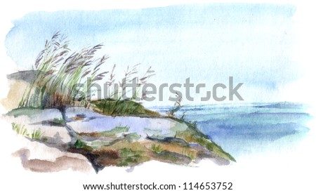 Grass on stones