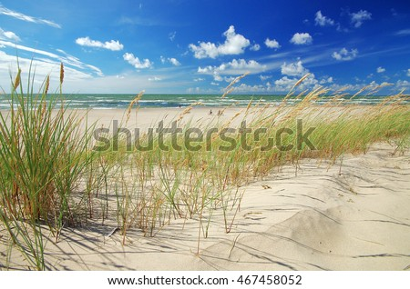 Grass sand dune beach sea view, ventspils, latvia