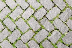 Grass Stone Floor texture pavement design. greenery color
