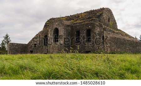 Grass swaying in the wind  on Montpelier Hill in Dublin, Ireland. Derelict structure build out of stone under a gloomy sky.  #1485028610