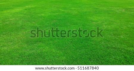 Grass texture background. artificial grass - Shutterstock ID 511687840