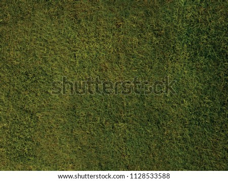 Grass Texture Background. High Qaulity Grass Texture. - Shutterstock ID 1128533588