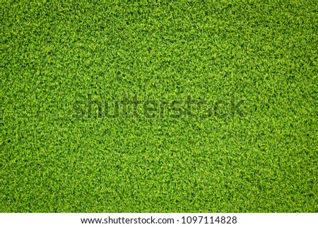 grass texture for background