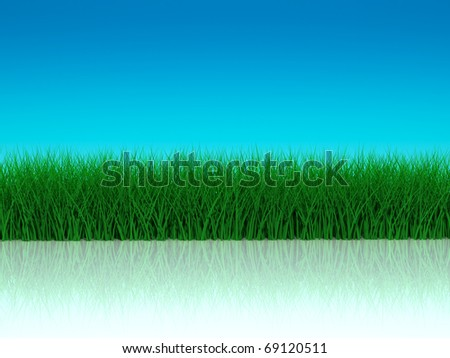 Grass with reflection on blue sky