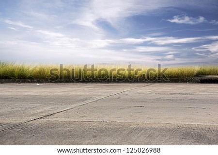 Grass with road and sky.