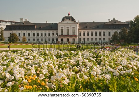 Grassalkovichov palace. white flowers in foreground, nice sunny day, square composition