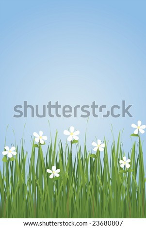 Grasses (Vector file also available in my portfolio)