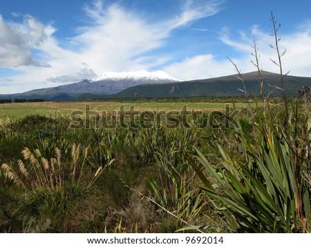 Grassland and Mountains - Tongariro National Park, New Zealand