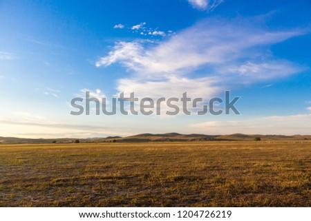 Grassland at dusk #1204726219