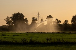 Grassland field with a water canon spewing a lot of water keeping the farmland moist during a dry period and heat wave in The Netherlands. Agriculture seasonal concept.