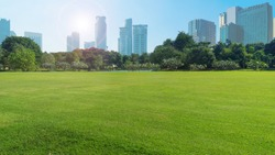 grassland green field with trees and buildings temple and grand palace in blue sky,Bangkok thailand