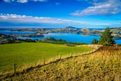Grassland, pasteurs and meadows above Dunedin town, South Island, New Zealand