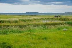 Grasslands National Park in Saskatchewan Canada