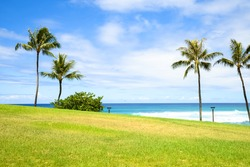 Grassy hill overlooking the sea
