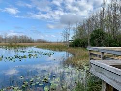 Grassy waters everglades preserve in Palm Beach Gardens, Florida