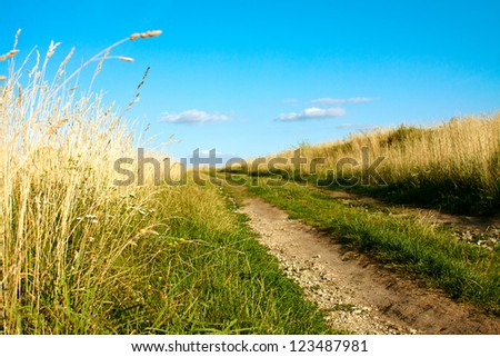 gravel road in the field