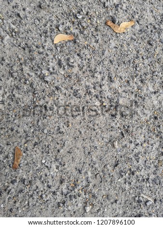 gravel texture with leaves #1207896100