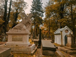 Graves and crypts in the cemetery on a sunny autumn morning. Autumn in the cemetery.