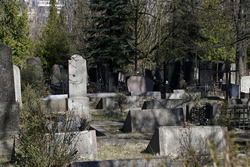 graves in the old cemetery