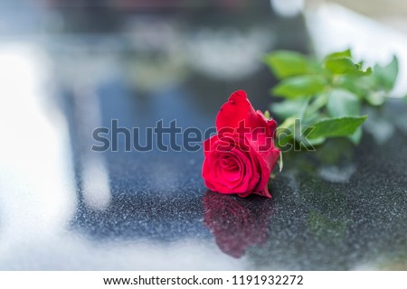 Gravestone with withered rose. Red rose was left on gravestone in the graveyard for someone who passed away. Flower on memorial stone close up. Red carnation on gravestone - Shutterstock ID 1191932272