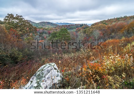Graveyard fields overlook in the smoky mountains in north carolina