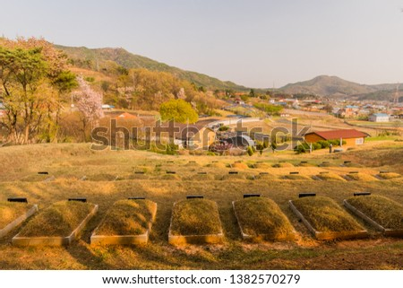 Graveyard on side of mountain overlooking rural community under overcast sky,