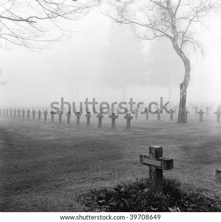 graveyard with rows of crosses and trees in the autumn mist monochrome film grain