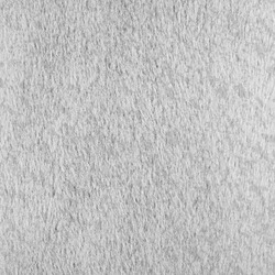 gray animal hair