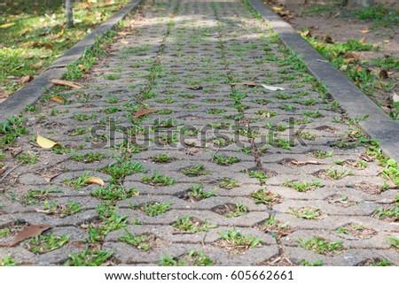 gray brick stone on the ground...
