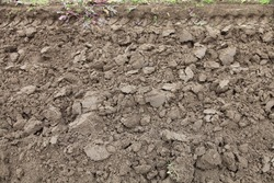 Gray brown ploughed ground dry field with tractor track on edge — soil cultivation, rustic agricultural texture for background