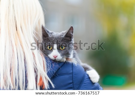 gray cat on the girl's shoulder