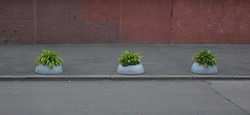 Gray concrete hemispheres with green plants restrict the entrance to the sidewalk
