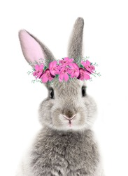 gray easter bunny in a pink wreath