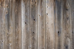 Gray finished weathered fence boards with knots  for use as a texture