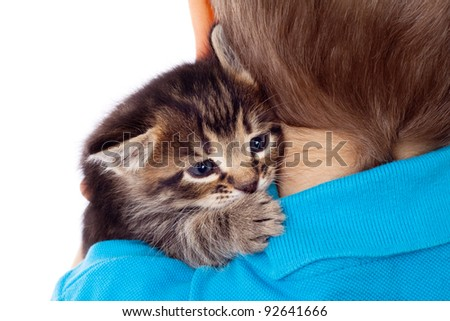 Gray kitten on boy's shoulder, isolated on white