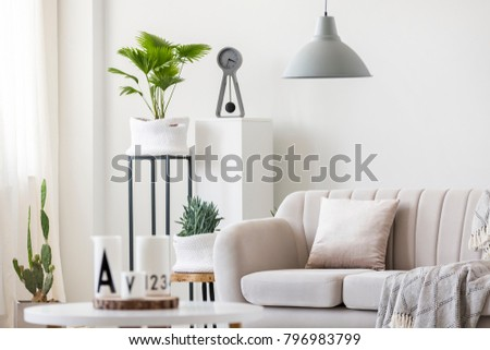 Gray lamp above beige couch with pillow in bright living room interior with plants #796983799