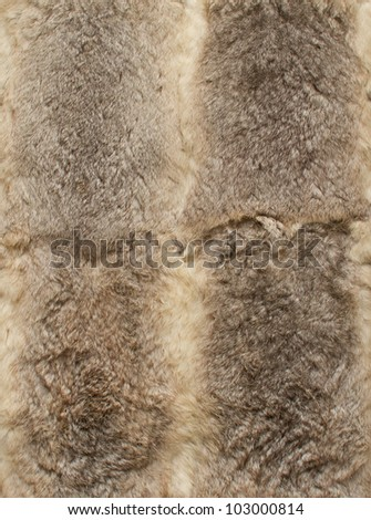 Gray leathers of rabbits, four pieces together