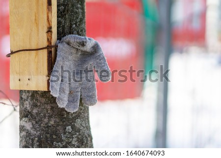 gray lost glove hooked to a tree