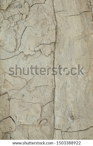 Gray rough rough rock with large cracks. #1503388922