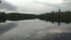 Gray solid clouds over a forest lake. Summer day. The water of the forest lake is of various shades of gray from gray-white almost solid clouds. On the other side of the forest stands a dark wall.