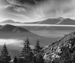 Grayscale. Forest on autumn slope and clouds between the peaks.