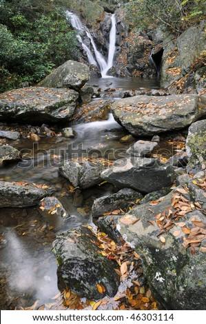 Grayson Highlands State Park, Virginia Cabin Creek Falls Vertical in Autumn