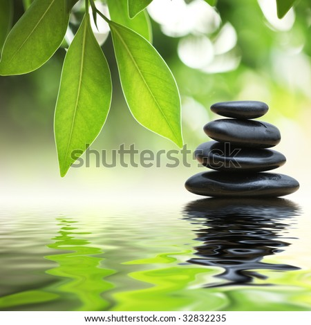 Grean leaves over zen stones pyramid on water surface